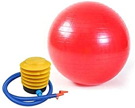 Red Favorite Color SWISS 65cm BALL FITNESS EXERCISE GYM YOGA AB ABDOMINAL FIT TONING WEIGHT LOSS RED