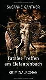 Fatales Treffen am Elefantenbach von Susanne Gantner