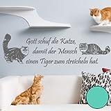 A288 Adhesivo de pared 'Gott schuf die Katze' (disponible en 40 colores), vinilo, verde menta, 180 cm X 55 cm