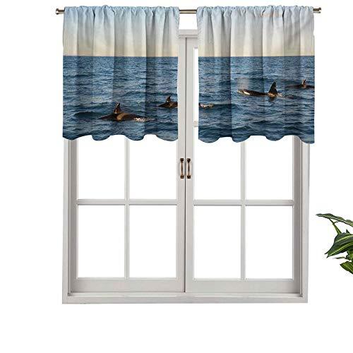 Hiiiman Cenefa recta de cortina con bolsillo para barra de alta calidad, una imagen real de cuatro ballenas asesinas, juego de 2, 54 x 24 pulgadas, ideal para cualquier habitación y dormitorio