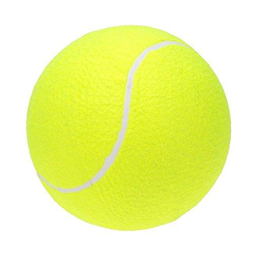Lixada Pelota Tenis Grande 9.5in/23cm Niños Adultos