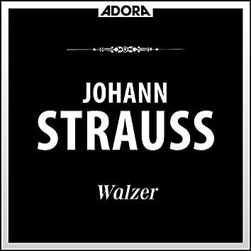 Strauss: Walzer, Vol. 1