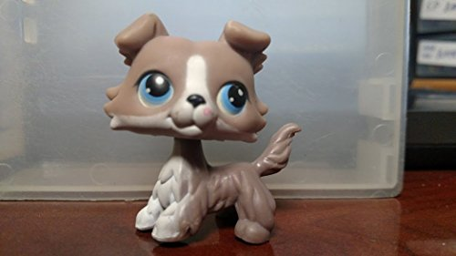 Hasbro Littlest Pet Shop Border Collie Puppy Dog # 67 (Grey and White with Blue Eyes) - LPS Loose Figures - Replacement Pets - LPS Collector Toy (Out of Package/OOP)