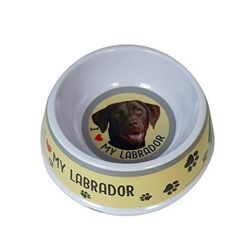 Nap ~ huisdier/huisdier/hond ~ voering/voering/avondetenschotel ~ LABRADOR (bruin)