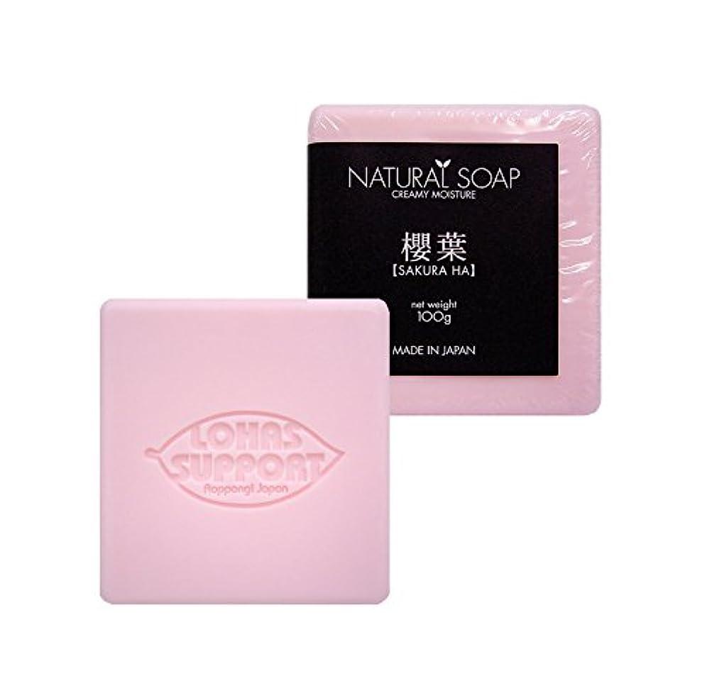 保持ガス土砂降りNATURAL SOAP