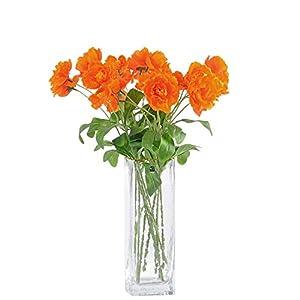 "cn-Knight Artificial Poppy Flower 12pcs 21"" Long Stem Silk Papaver with 2 Blossoms for Veteran Day Home Decor Centerpiece Housewarming Wedding DIY Bridal Bouquet(Orange)"