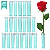 Floral Water Tubes 20pcs Rose Flower Picks Tubes Milkweed Cuttings Vials Clear Green Plastic Tubes for Flower Arrangements Craft Supply Eco Friendly - 2.85' x 0.7'