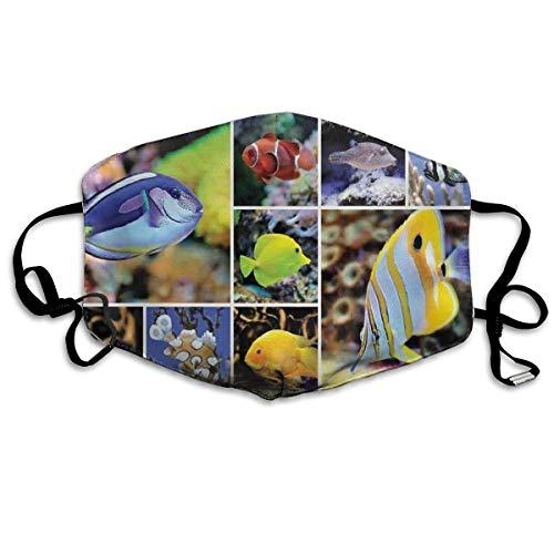 PCYN Collage de Fotos subacuáticas con colección de Peces Tropicales