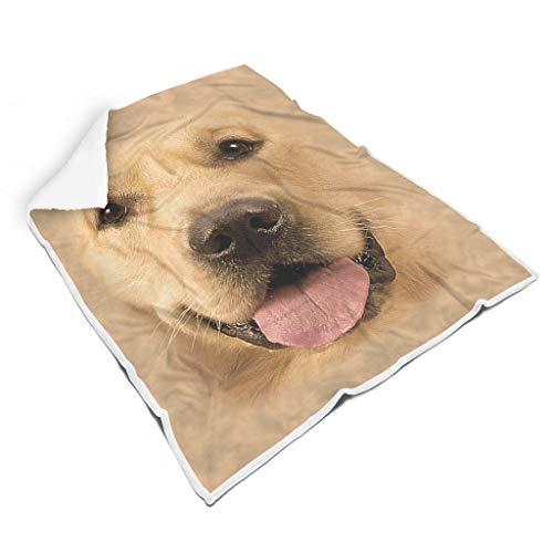 Bohohobo Mascota perro cara cuadrado alfombra polar suave material europeo estilo patrón para viajar sofá y una familia blanco 50x60 pulgadas