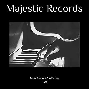 Relaxing Piano Music & Bird Whistles, Vol. 1