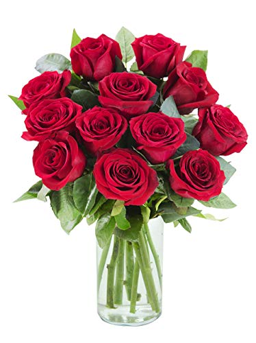 Purchase Now for Delivery by Wednesday | Arabella Bouquets 12 Stems of Fresh Cut Red Roses in a Free Designer Glass Vase