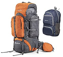 Tripole Walker 65 litres Rucksack with 20 Litre Foldable Day Pack | Internal Frame with Metal Rod | Rain Cover | Bottom Opening | Laptop Section (Orange),Tripole Gears