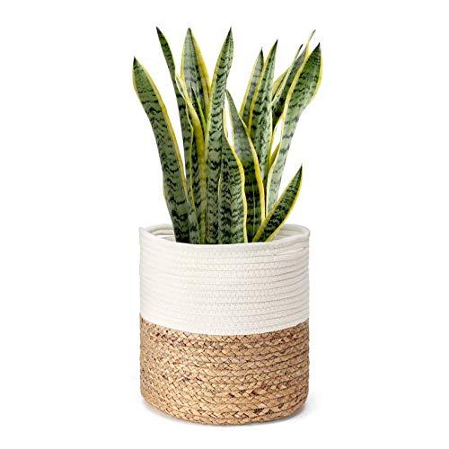 HKU Cotton Rope Plant Basket Planter, for Up to 11' Flower Pot Indoor Planter Basket, Multifunctional Table Desk Organizer with Handles (Size : 28 * 28cm)
