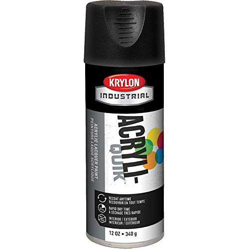 Krylon 1602 12-Oz Fast-Drying High Gloss Finish Spray Paint, Ultra-Flat Black