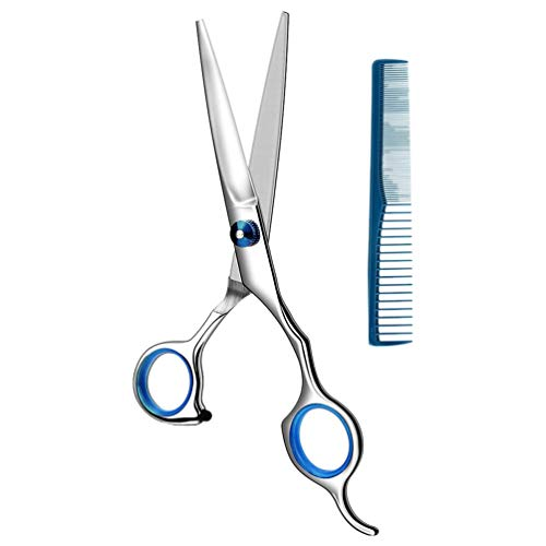 Huante Stainless Steel Hair Cutting Scissors 6.5 Inch Hairdressing Scissors Professional Salon