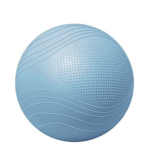 Mirando hacia atrás es la orilla Yoga Fitness Ball Silla Bola Yoga Bola Asiento Asiento Asiento Fitness Pilates Asiento Corrección Espinal Ball Ball(Size:75cm,Color:Niebla Azul Gris)
