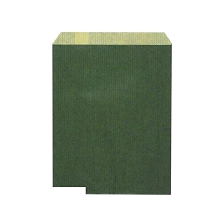 エキスバンドル延ばすBR19429 ギフトバッグ 平袋 エメラルド小