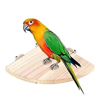 Hamster Oiseau Perchoir, support de maintien, EN BOIS Naturel pour animal domestique Parrot plate-forme support Rack Hamster Parrot support pour animal domestique