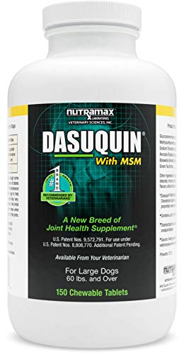Nutramax Dasuquin with MSM Chewables, Large Dog, 150 Count