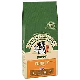 James Wellbeloved Puppy Dog Food Turkey & Rice 15kg