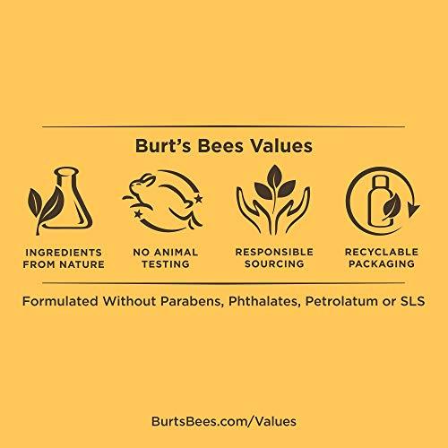 Burt's Bees Pomegranate Seed Oil Very Volumizing Shampoo, Sulfate-Free Shampoo, 10 Oz (Package May Vary)