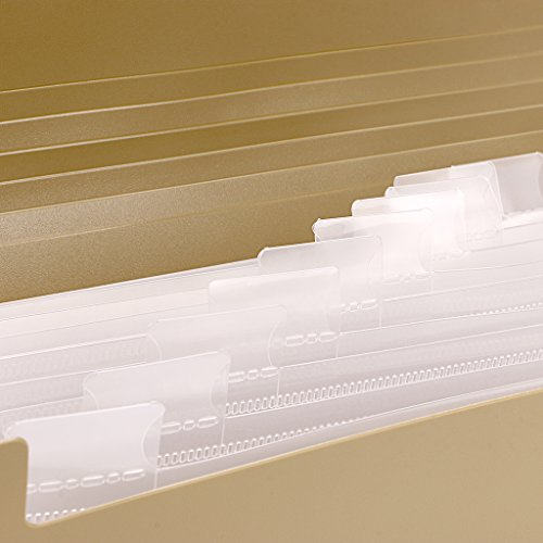 BTSKY Expanding File Folder –New 13 Pockets Small Accordion File Folder Expandable Card Ticket Holder File Storage Folder Check Bill File Folder Plastic Business Document Organizer Wallet Case(Khaki) Photo #5