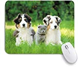 Benutzerdefiniertes Büro Mauspad,Hund Haustiere Welpenfamilie im Garten Australian Shepherds und eine Katzenlandschaft,Anti-slip Rubber Base Gaming Mouse Pad Mat
