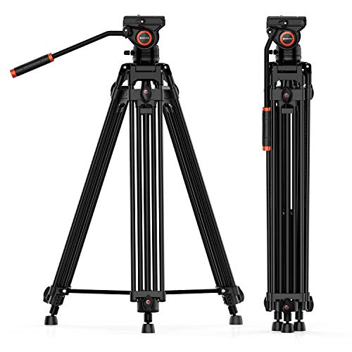 Best tripod video head professional for 2020