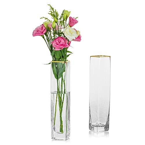 Glasseam Vases Décoratifs pour Centres De Table 2 Pcs Vase Cylindre en Verre pour Fleurs Jardinière épaisse Terrarium Fleurs Arrangements Floraux, Décoration De Bureau à Domicile, Or, 30cm Taille
