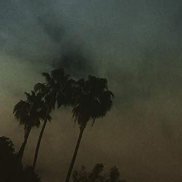 Night Winds Whisper