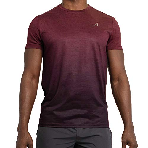 Alive Men's Tee Shirt Active Quick Dry Workout Short Sleeve Shirts Crew Neck (Medium, Sonoma Red Heather/Deep Mullberry Dip)