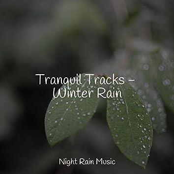 Tranquil Tracks - Winter Rain