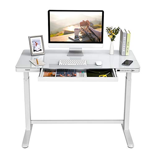 FLEXISPOT EG8 Standing Desk, Home Office Electric Height Adjustable Sit-Stand Desk 120 * 60cm Glass Top (White Frame+White Glass Top)