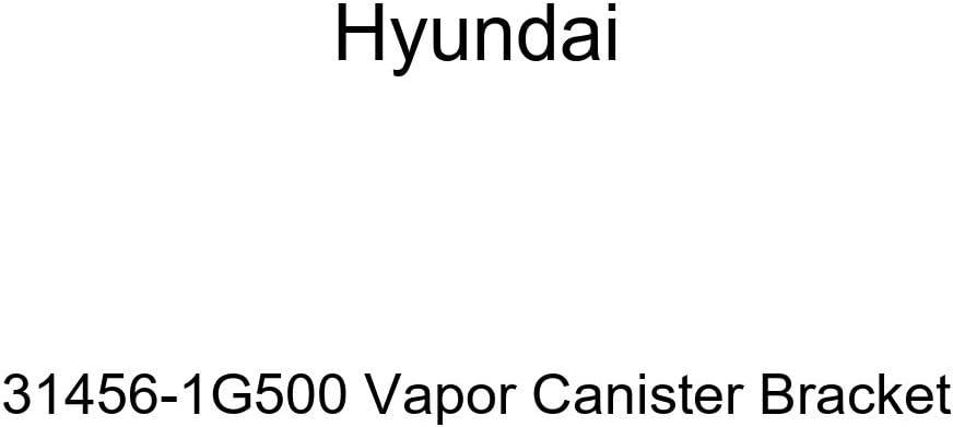 Genuine Hyundai 31456-1G500 Vapor Canister Bracket