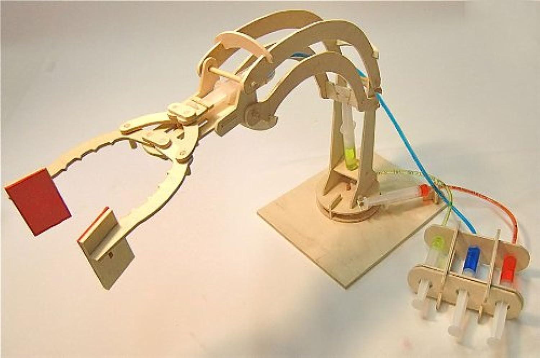 Pathfinders  Hydraulic Robotic Arm