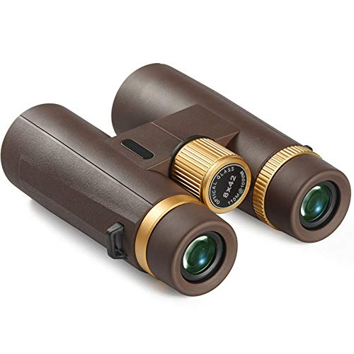 Fernglas Robust Ferngläser 10×24 Wasserdicht Feldstecher für Vogelbeobachtung, Wandern, Jagen, Kompakt Teleskop für Erwachsene und Kinder