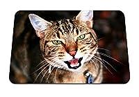 22cmx18cm マウスパッド (猫の顔悲しいニャーストライプ) パターンカスタムの マウスパッド