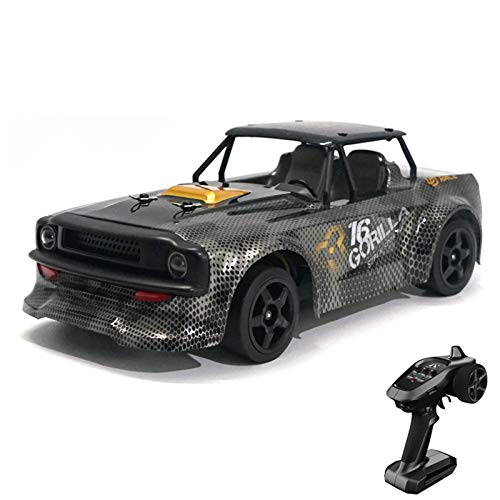 dbsdfvd Sg-1603 /Sg-1604 Corrón Plano Alto-Speed Car,Mountainish 1 16 Coches De Rally RC De Alta Velocidad,2.4G 4WD Drift Car Racing Car Toys For Boys and Girls Best Gifts (B)