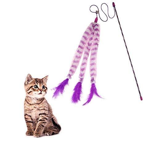 Broadroot Juguete para gato con varilla de caña de pescar de ...