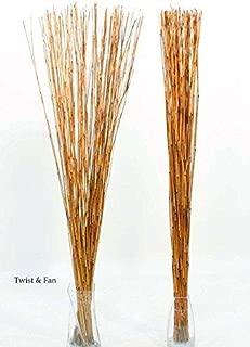Green Floral Crafts   Decorative Reed Sticks - Burnt Orange