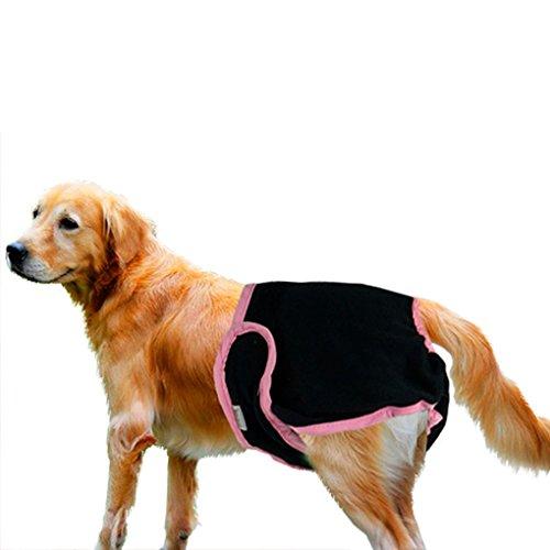 Bao Core Haustier Hund Sanitär Windel Hygieneunterhose Physiologische Unterwäche Schwarz/Pink M