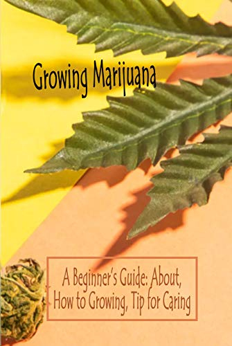 Growing Marijuana: A Beginner's Guide: About, How to Growing, Tip for Caring (English Edition)