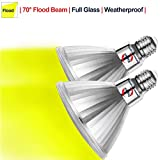 Explux Yellow Color PAR38 LED Flood Light Bulbs, Bug Light, Dimmable, Outdoor Weatherproof, 120W Equivalent, 2-Pack
