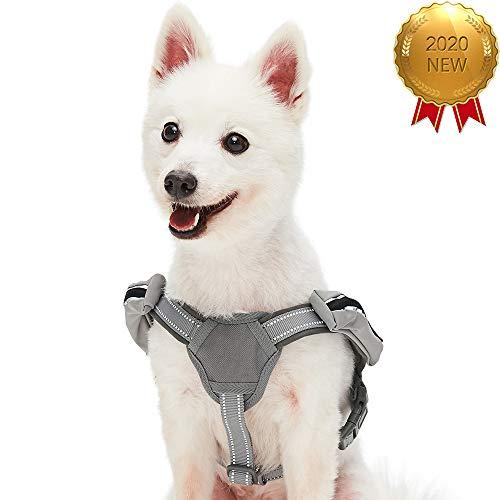 UMI. Essential - Arnés Ajustable Tipo Chaleco para Perros con Acolchado de Neopreno y Bandas Reflectantes, Talla S, Gris