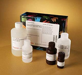 35081 - Pierce Fast Western Blotting Kit, SuperSignal West Femto Substrate, Thermo Scientific - Fast Western Blot Kit, SuperSignal West Femto, Rabbit, (8x10 cm) - Each