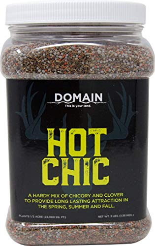 Domain Outdoor Hot Chic Deer Food Plot Seed, Great to Plant in Spring, 1/2 Acre, Hardy Mixture of PH Tolerant Perennials, Can Last Several Years Chicory - 2 Varieties of Clover