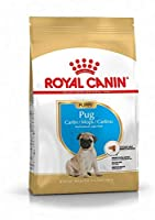 A complete food for younger pugs up to 10 months old. An exclusive kibble shape has also been utilised to aid chewing with their brachycephalic jaws. The formula ensures healthy skin & digestive health by promoting a balance in the intestinal flora.