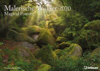 Malerische Wälder - Kalender 2020 - teNeues-Verlag - Fotokalender - Wandkalender mit beeindruckenden Aufnahmen und Platz für Eintragungen - 42 cm x 29,7 cm