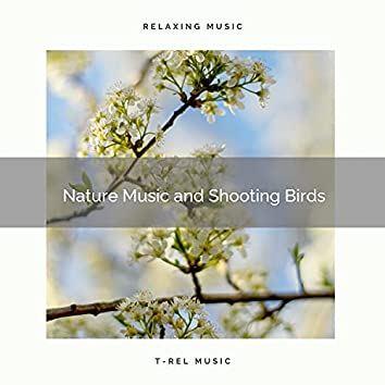 ! ! ! ! ! Nature Music and Shooting Birds