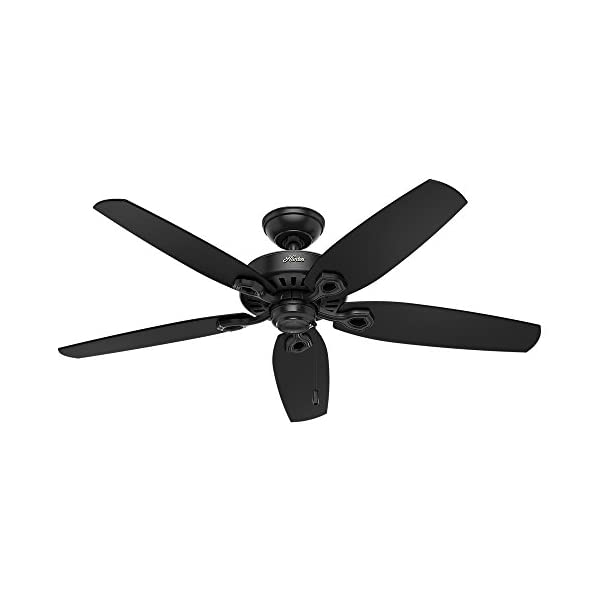 HUNTER 53294 Builder Elite Indoor / Outdoor Ceiling Fan with Pull Chain Control,...